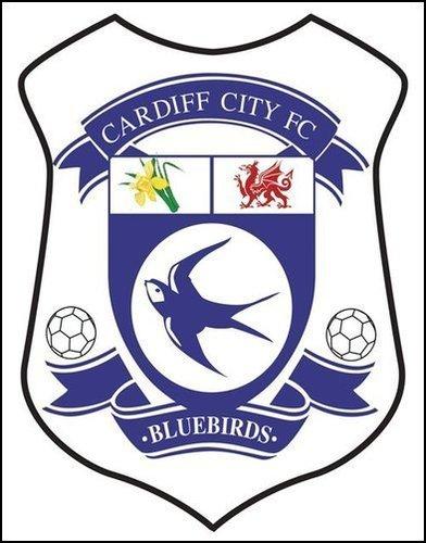 Thefootyblog Net My Team I Cardiff City