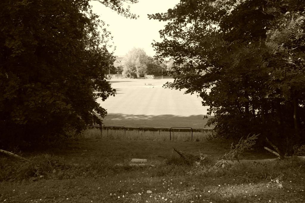 Cathkin Park 2014