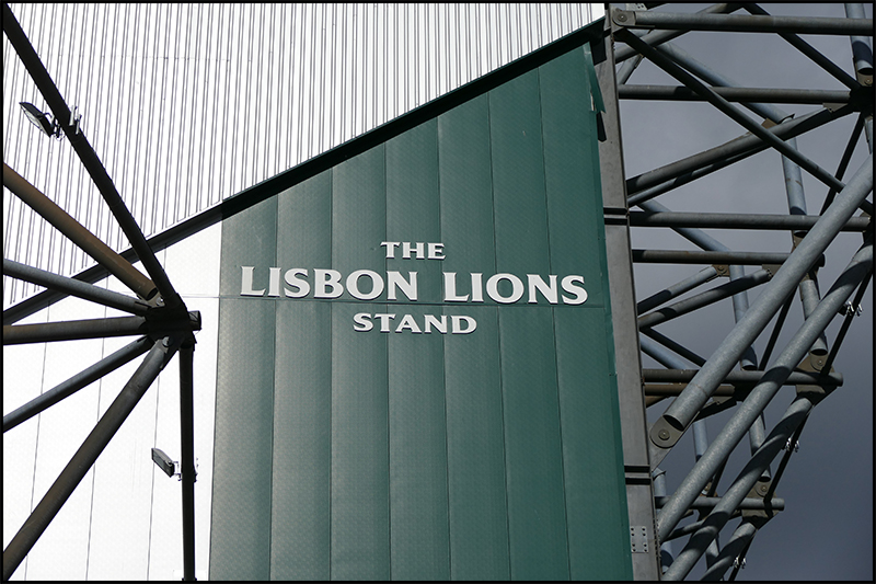 Lions stand